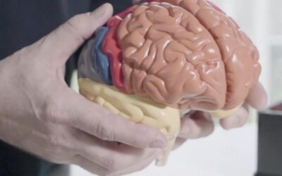 Why music and sensory stimulation is medicine for the brain