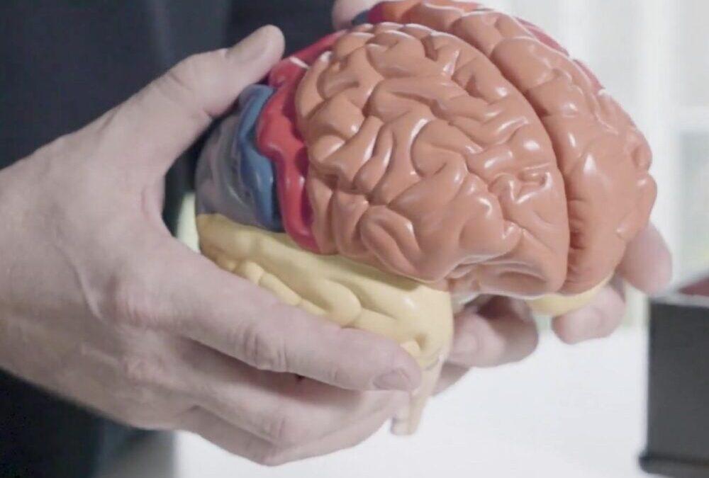 Pourquoi la musique et la stimulation sensorielle sont des médicaments pour le cerveau