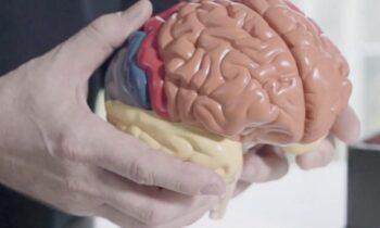 Waarom muziek en zintuiglijke stimulatie een medicijn is voor de hersenen